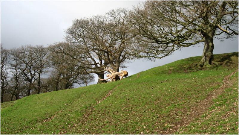 Llangollen (Wales)