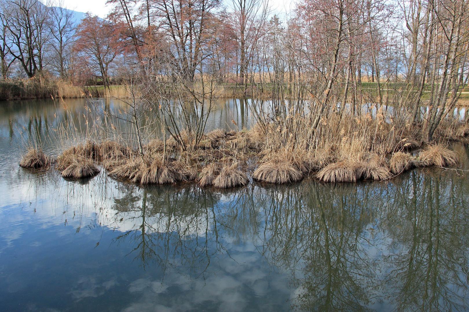 l'île aux cygnes est encore bien dans l'eau