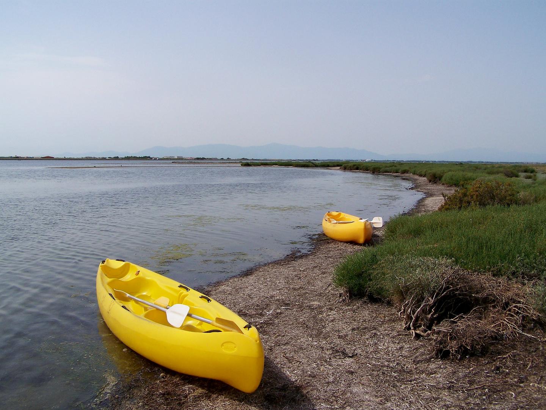 L'île aux oiseaux sur l'étang de Leucate.