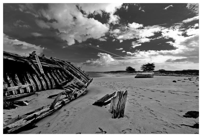 L'île déserte.