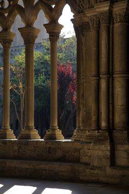 Lleida antigua III (Para Ricard que me mostraba adonde estaba la buena foto)