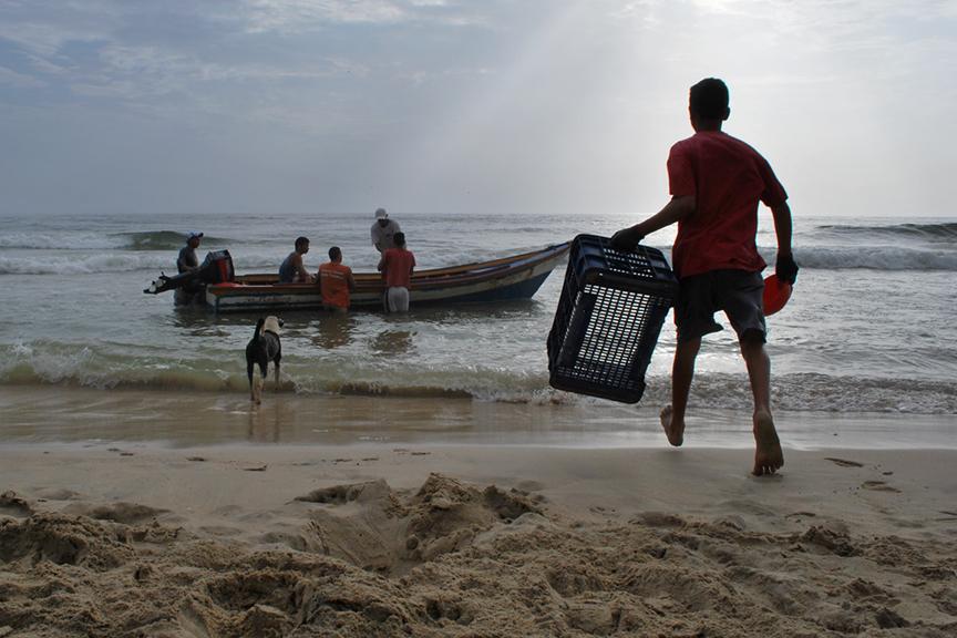Llevando la cesta