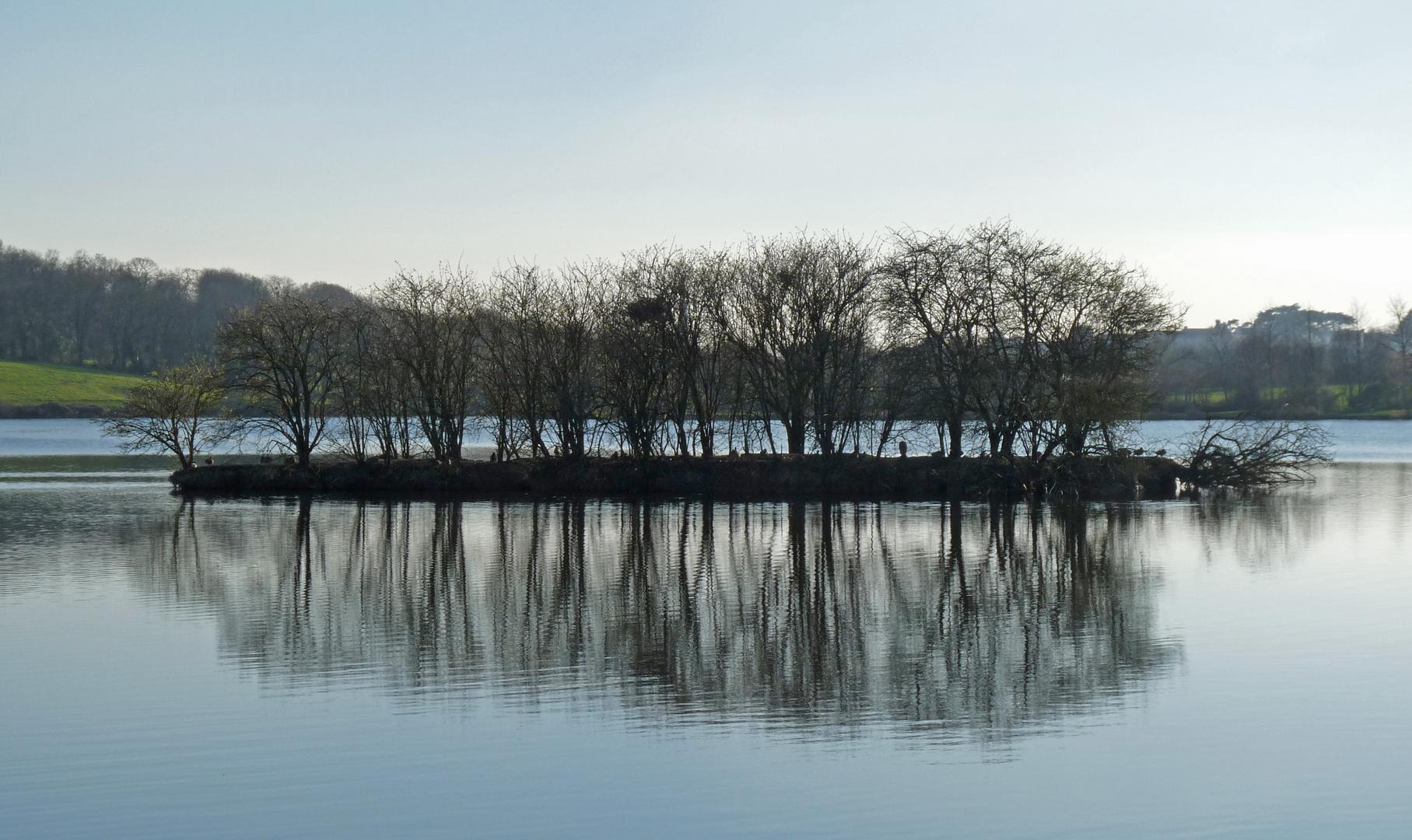 L'îlot 2