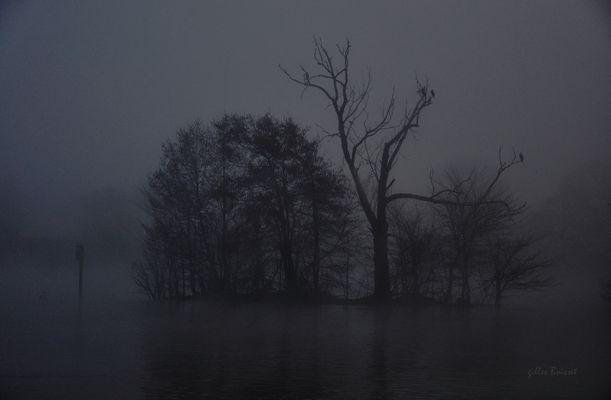 l'îlot fantome