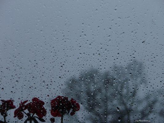 Lluvia en mi ventana