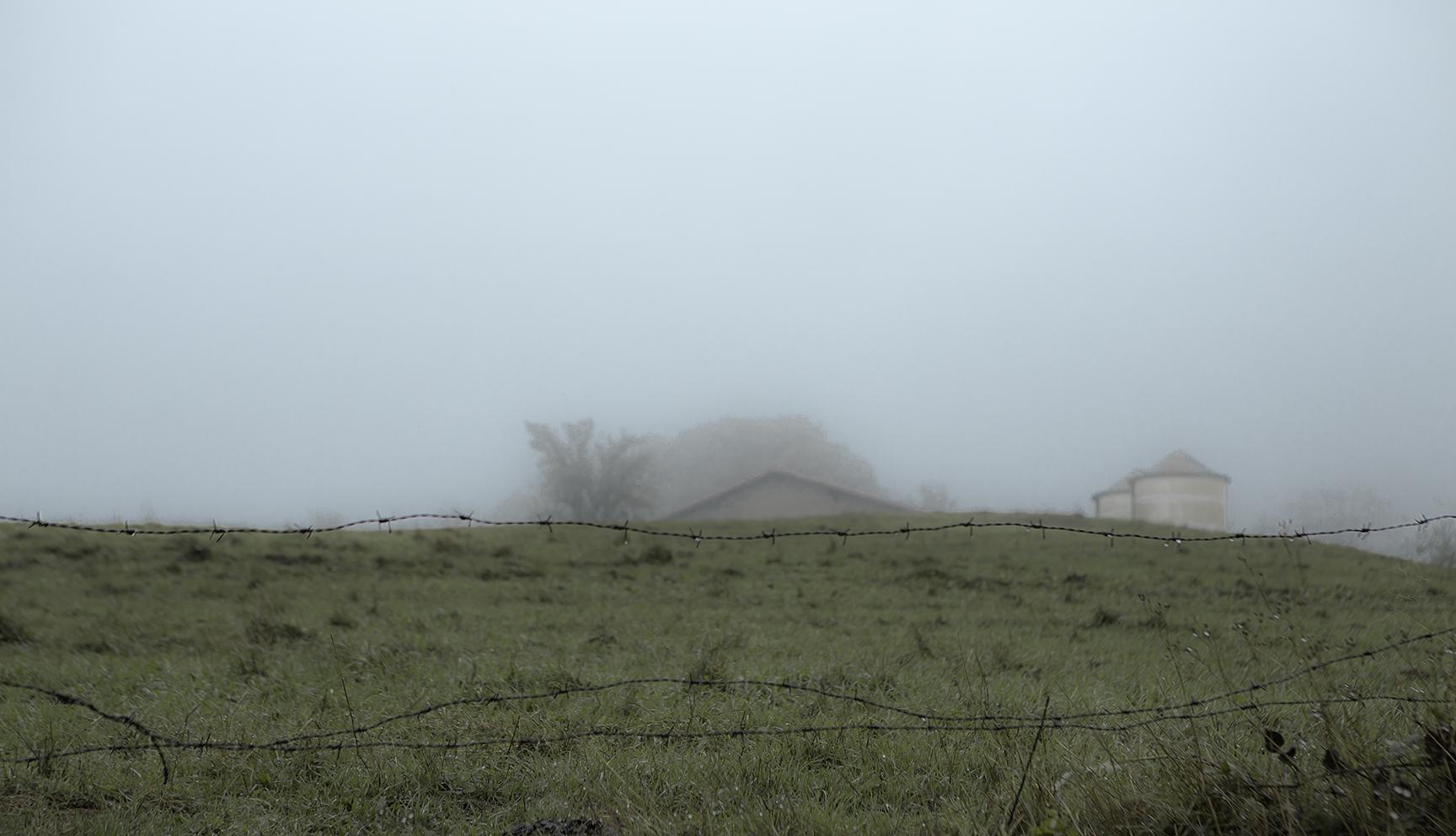 Lluvia y Niebla