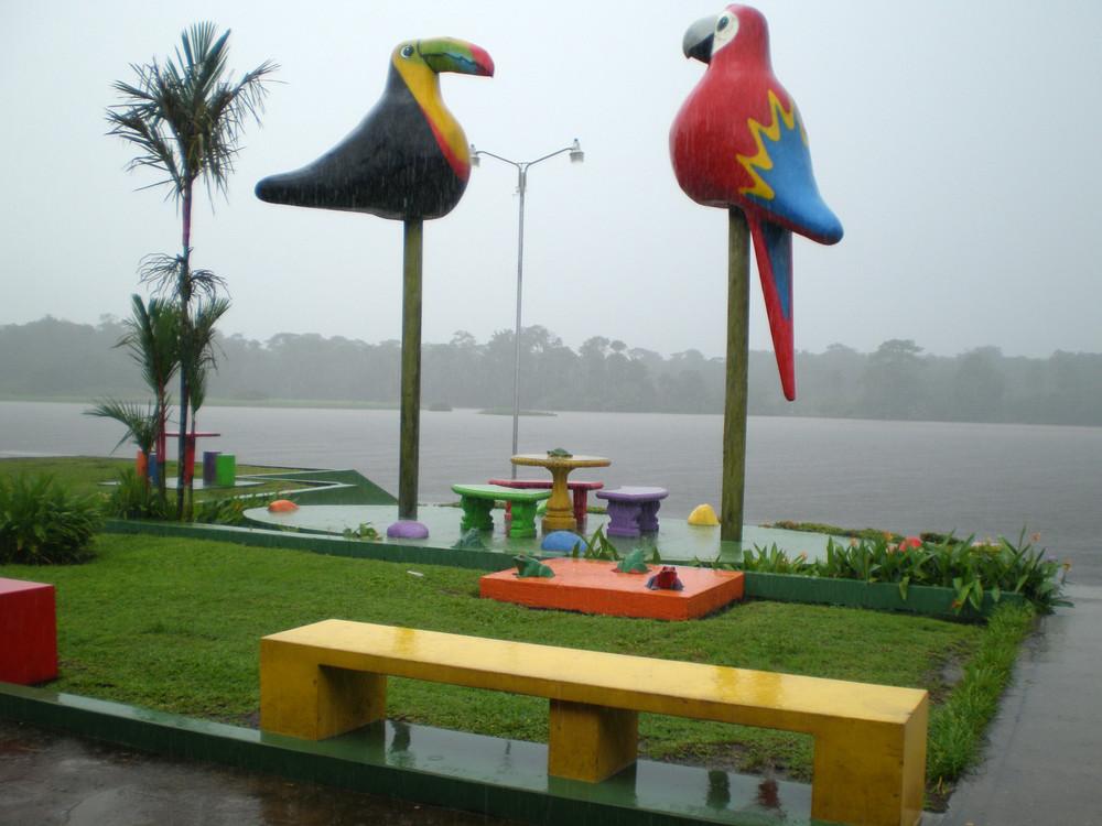 lluvia y viento,parque solitario