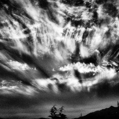 L'obscure lumière