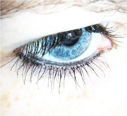 [l'occhio]