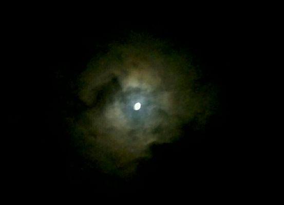 L'occhio misterioso della notte.