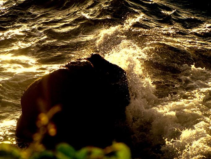 l'ocean ou cette chose si merveilleuse!