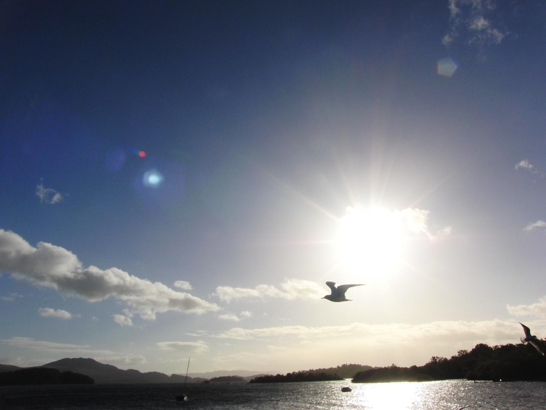 Loch Logmond