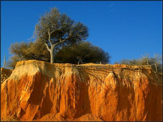 L'ocre des falaises de l'Algarve, Portugal