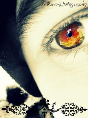 L'oeil flomboyant