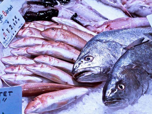 L'oeil vif pour du poisson frais sur le marché de Ronce-les-Bains
