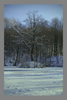 Löschsee im Winter