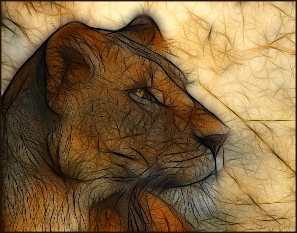 Löwe fraktal