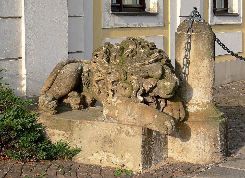 Löwe in Ketten