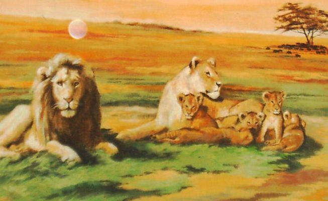 Löwen einmal anders