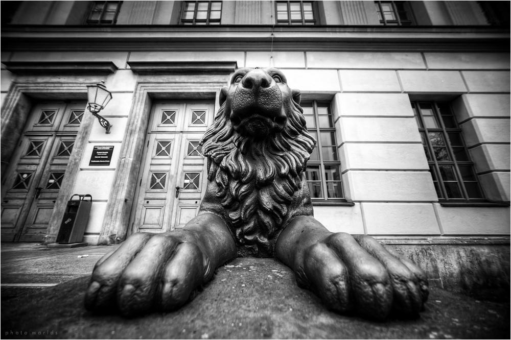 Löwengebäude