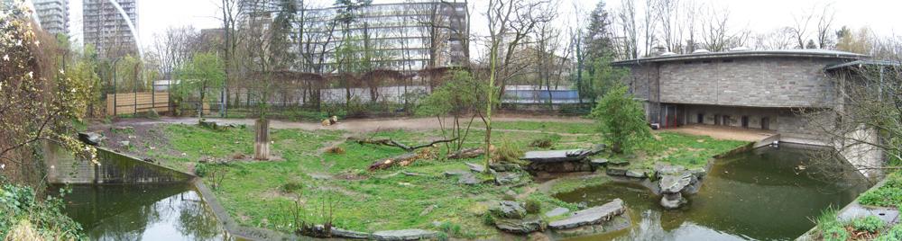 Löwengehege Pamorama in Kölner Zoo