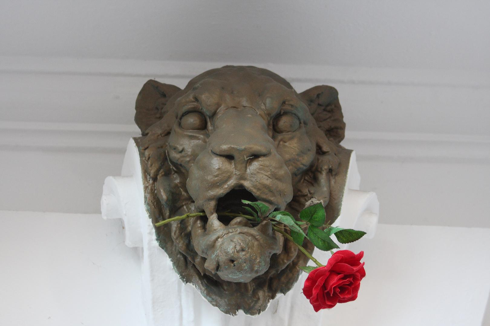 Löwenkopf mit Rose