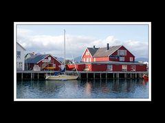 Lofoten-Austvågøy 015