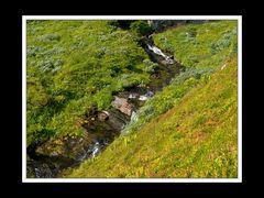Lofoten-Vestvågøy 051