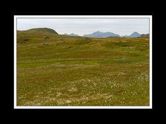 Lofoten-Vestvågøy 063