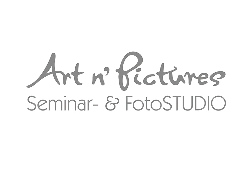 Logo Art n`Pictures