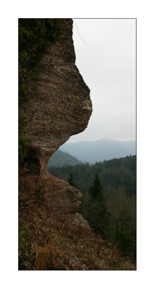 L'ogre des Vosges
