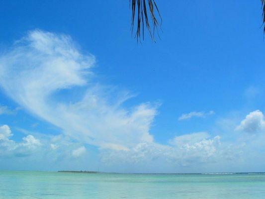 Lohifushi