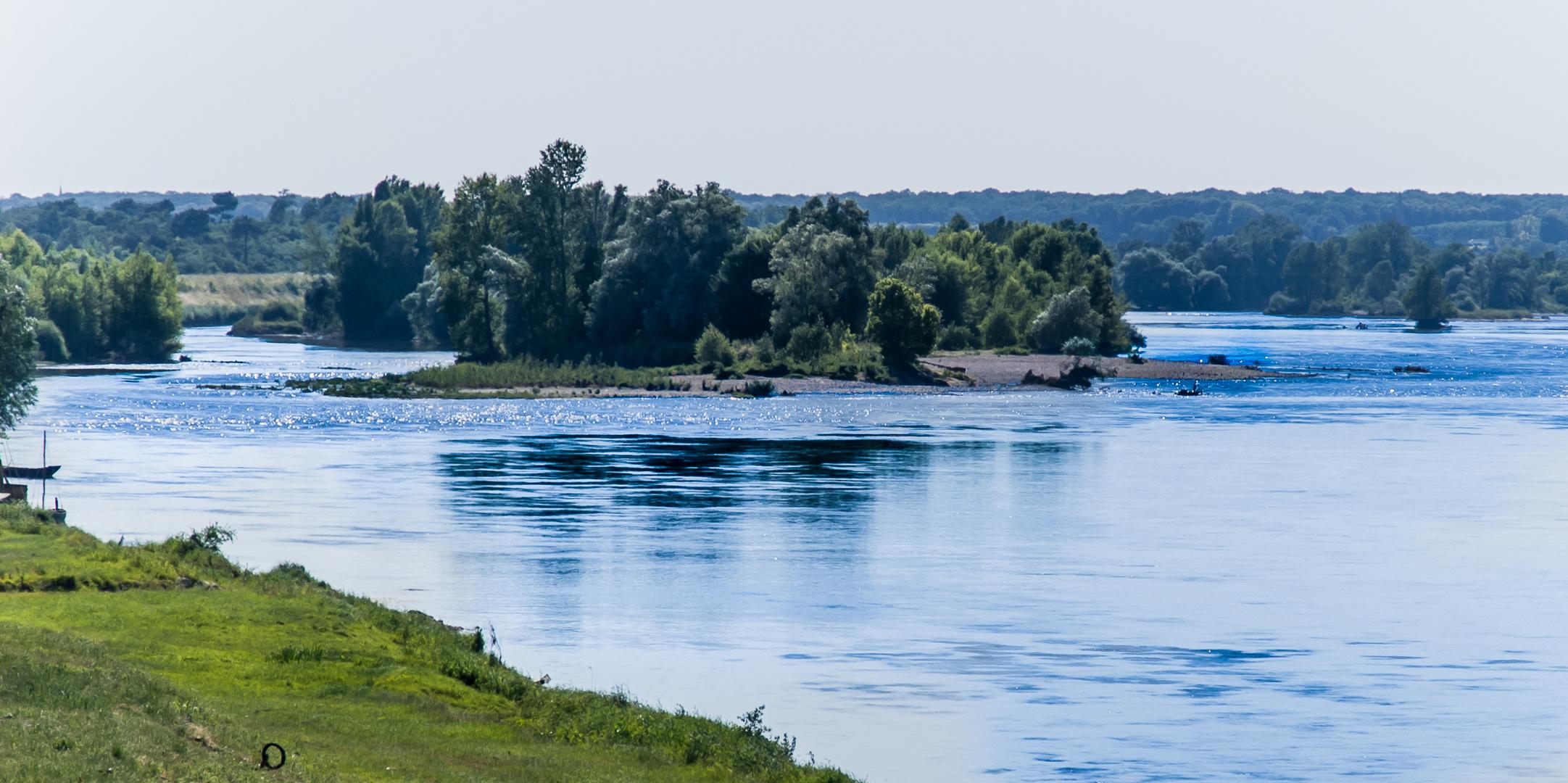 Loire-Insel - Muides sur Loire/Frankreich