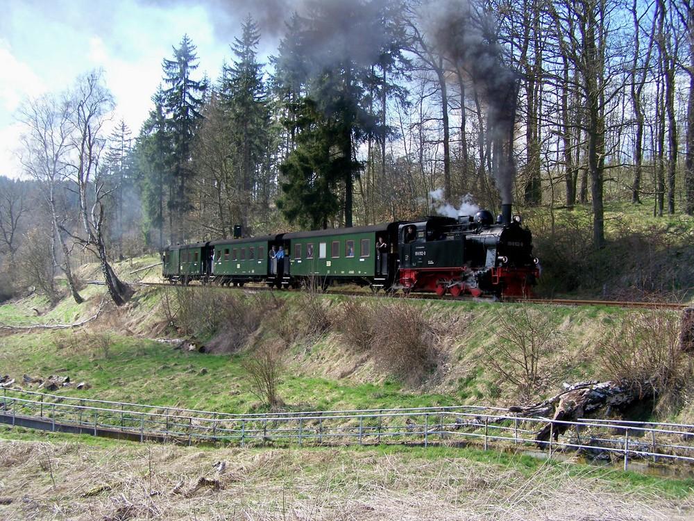 """Lok 99 6102 """"Fiffi"""" mit Traditionswagen kurz vor Harzgerode"""
