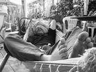 Lollo on the hammock - Lollo sull'amaca (0070)