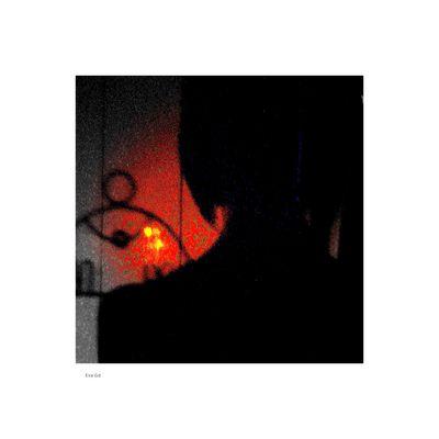 L'Ombre de la nuit ....