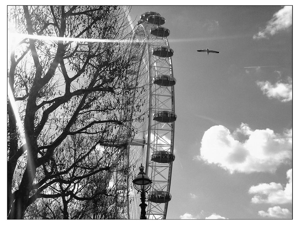 London #6