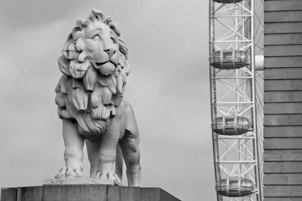 Londons Lion-Eye
