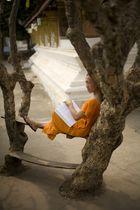 Lone reader