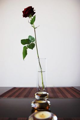 Lonely Rose...