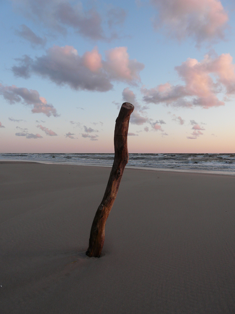 Lonely Stick