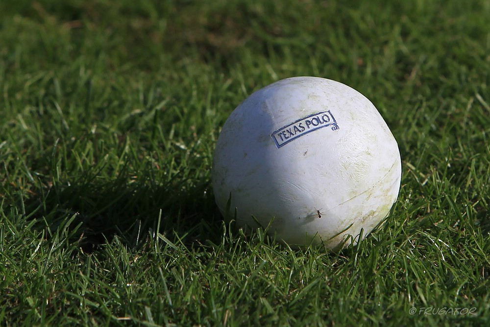 """Lonesome Polo-Ball""..."