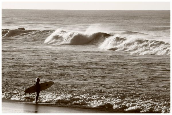 Lonesome Surfer