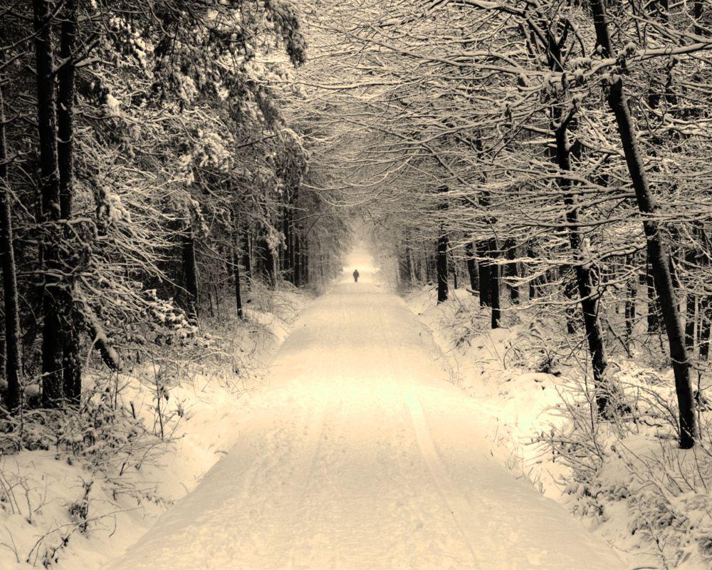 """ Lonesome Wanderer """