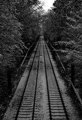 long track