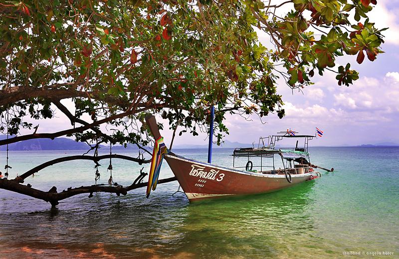 longtailboot