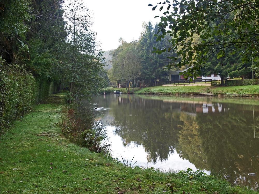Longuicher Fischweiher in der Herbstsonne