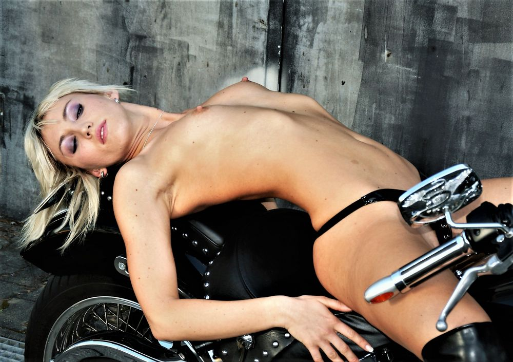 LOOK Harley Mo-52a-col   _w10V2col