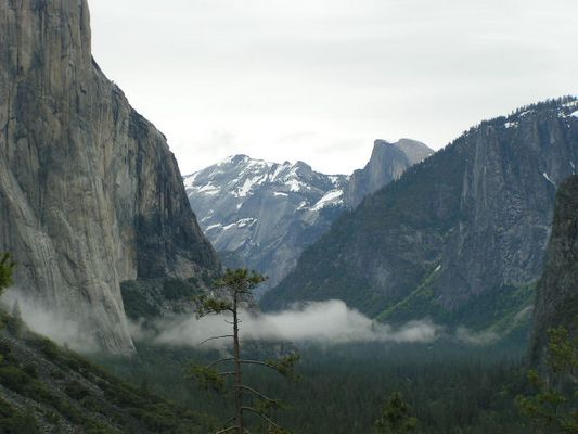 Look into the Yosemite Valley