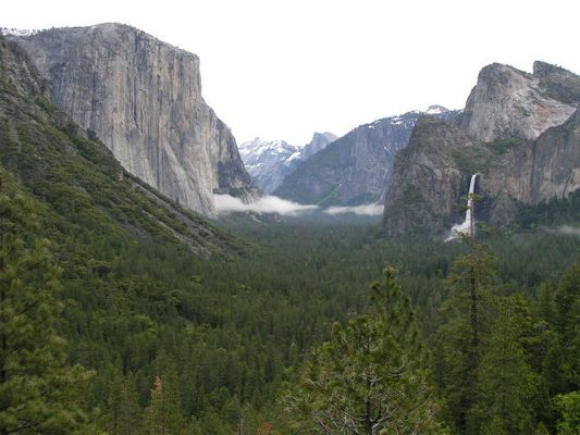 Look into the Yosemite Valley II
